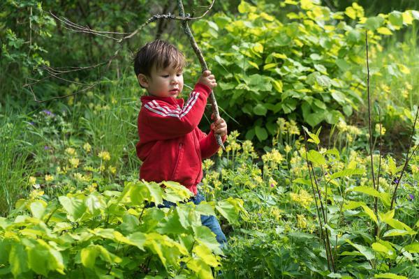 lesne przedszkole