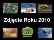 """Konkurs """"Zdjęcie Roku 2010 Ekologia.pl"""" ..."""