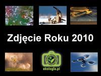 """Konkurs """"Zdjęcie Roku 2010 Ekologia.pl"""" rozstrzygnięty"""