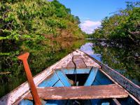 Ekologiczne wakacje – moda czy forma świadomego wypoczynku?