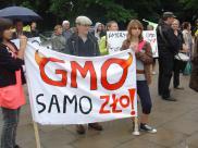 Pikieta pod Sejmem. Czy Senat zaakceptuje  GMO?