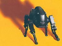 LittleDog – robot, który samodzielnie uczy się chodzić