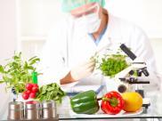 Genetycznie modyfikowane uprawy i żywność – za i ...