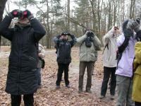 Zimowe ptakoliczenie. Rusza ogólnopolska akcja liczenia ptaków