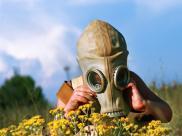 Alergia – epidemia XXI wieku