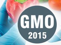 Mity i Rzeczywistość XXI wieku – Żywność Genetycznie Modyfikowana GMO