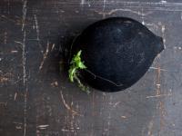 Czarna rzepa zastosowanie i właściwości. Przepisy na dania z czarną rzepą