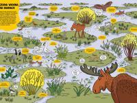 """""""O rety! Przyroda"""" – ta publikacja wprowadzi dziecko w świat przyrody"""