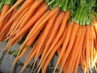 Czemu marchewka jest pomarańczowa?