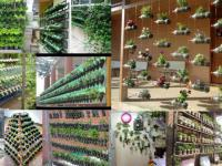 Studenci stworzą zielone meble miejskie