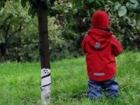 Zostań Ogrodnikiem – Gra Miejska na Szlaku Ogrodów Ulrychów
