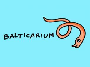 Rusza  portal edukacyjny dla dzieci Balticarium