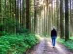 Do lasu po zdrowie