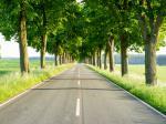 Jak zdobyć środki na ciekawy projekt ekologiczny?