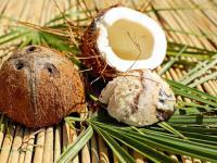 Cukier kokosowy – diament wśród słodyczy?
