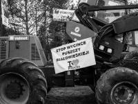 Aktywiści zablokowali ciężki sprzęt w Puszczy Białowieskiej