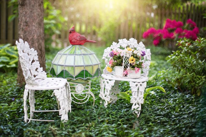 Lato w ogrodzie: podlewanie i odchwaszczanie