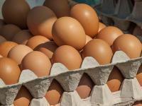 Grycan rezygnuje z jajek z chowu klatkowego