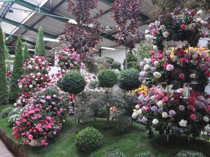 Rodzina Starkl - mistrzowie ogrodnictwa z Czech