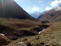 Historia bohaterów-ekologów z dalekiego Chile