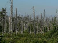 Jak naukowcy wykrywają źródła kwaśnych deszczy?
