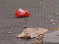 Ekologiczne zakupy czyli odwieczny problem plastikowych torebek