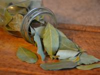 Liść laurowy przyprawa - właściwości i zastosowanie w kuchni