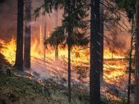 Pożary w Europie będą coraz częstsze