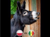 Zidane przewidział wyniki meczu Polska-Senegal?