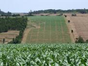 Rolnictwo a klimat