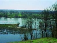 Dolina Środkowej Odry - Oddajmy rzece więcej przestrzeni