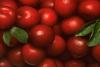 Baśniowe owoce 100