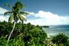 Fidżi 79