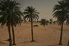 Afryka północno-zachodnia 45