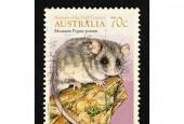 Znaczek wydrukowany w Australii z wizerunkiem drzewnicy górskiej dla serii Animals of the High Country.
