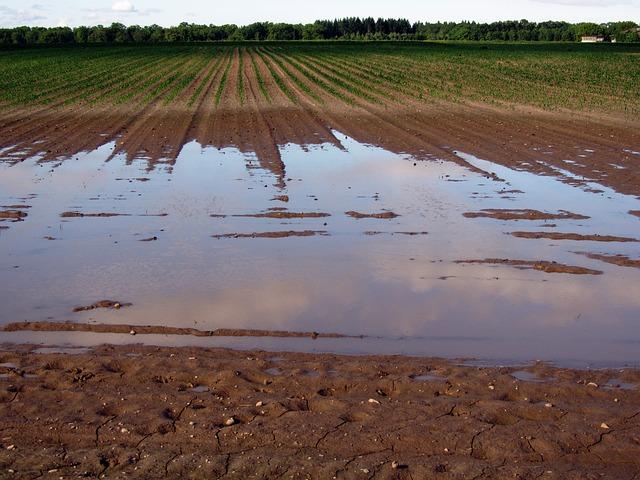 erozja wodna