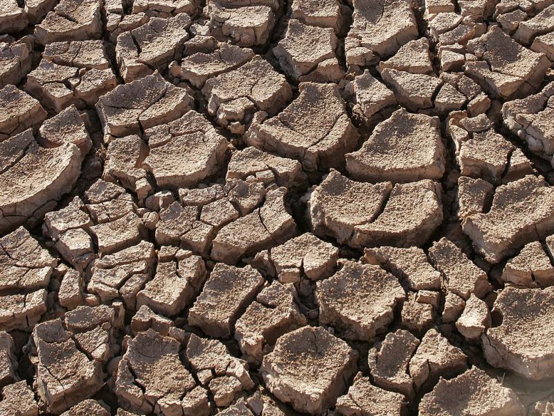 Sucha pokękana ziemia na pustyni Sonora