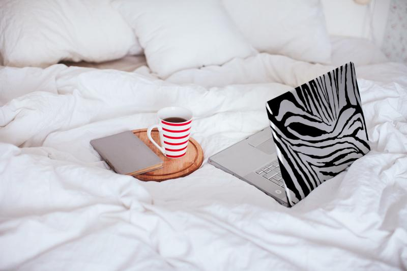naklejka zebra