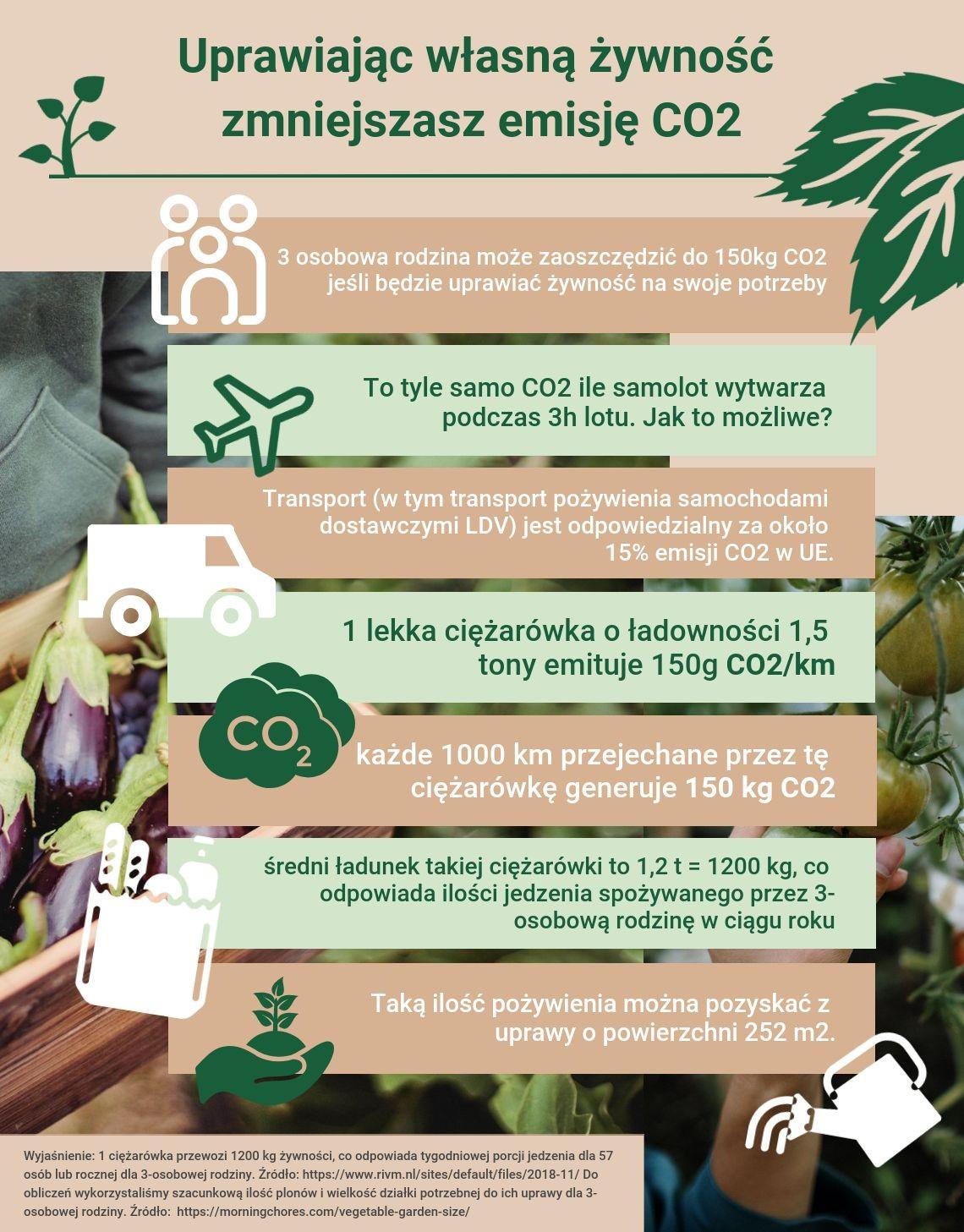 grafika: materiały ShopAlike.pl