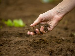 Ochrona gleby