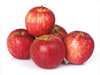 Ekologiczne owoce popularne w Belgii