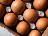 Nie daj się zrobić w jajo!