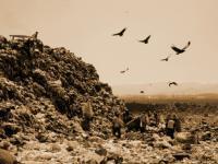 """Film dokumentalny """"Śmietnisko"""". Czy można połączyć recykling, odpady i sztukę?"""