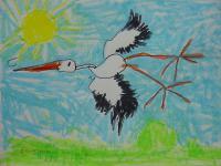 Konkurs plastyczny dla dzieci. Młodzi artyści znają polskie ptaki