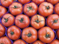 Czy sok pomidorowy wzmocni nasze kości?