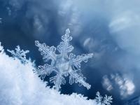 Płatki śniegu - opis, kształty i zdjęcia. Jak powstaje śnieg?