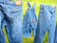 Kultowe dżinsy coraz bardziej ekologiczne