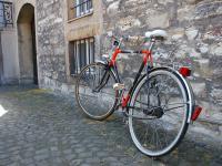 """Wsiądź na rower i """"Zaparkuj klimatycznie!"""" przy krasnalu, morsie, lajkoniku, lwie"""