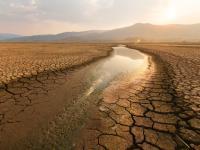 Ekstremalnie wysokie temperatury, susza i głód