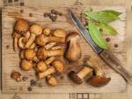 Grzyby wartości odżywcze grzybów